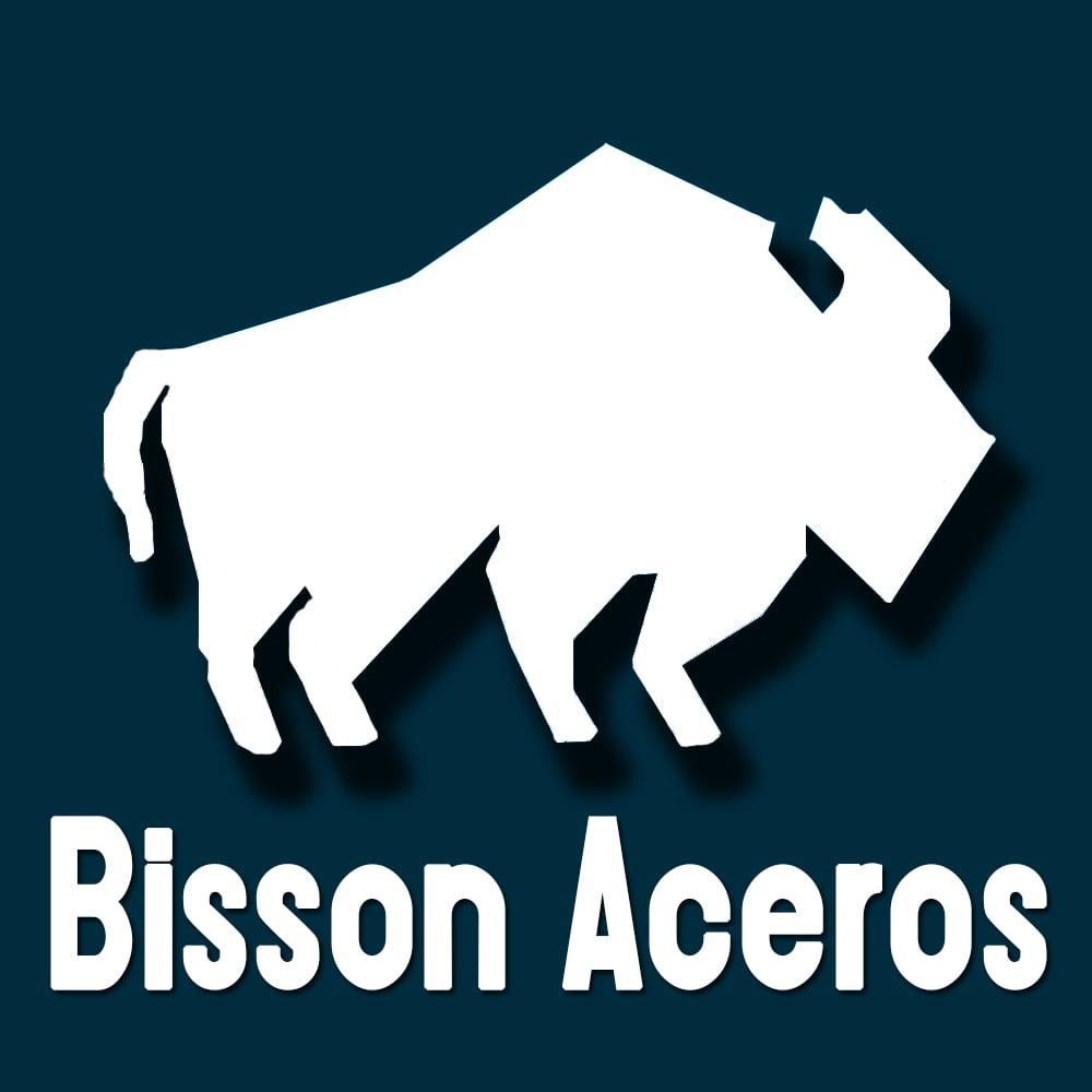 ACEROS Y ALEADOS BISSON