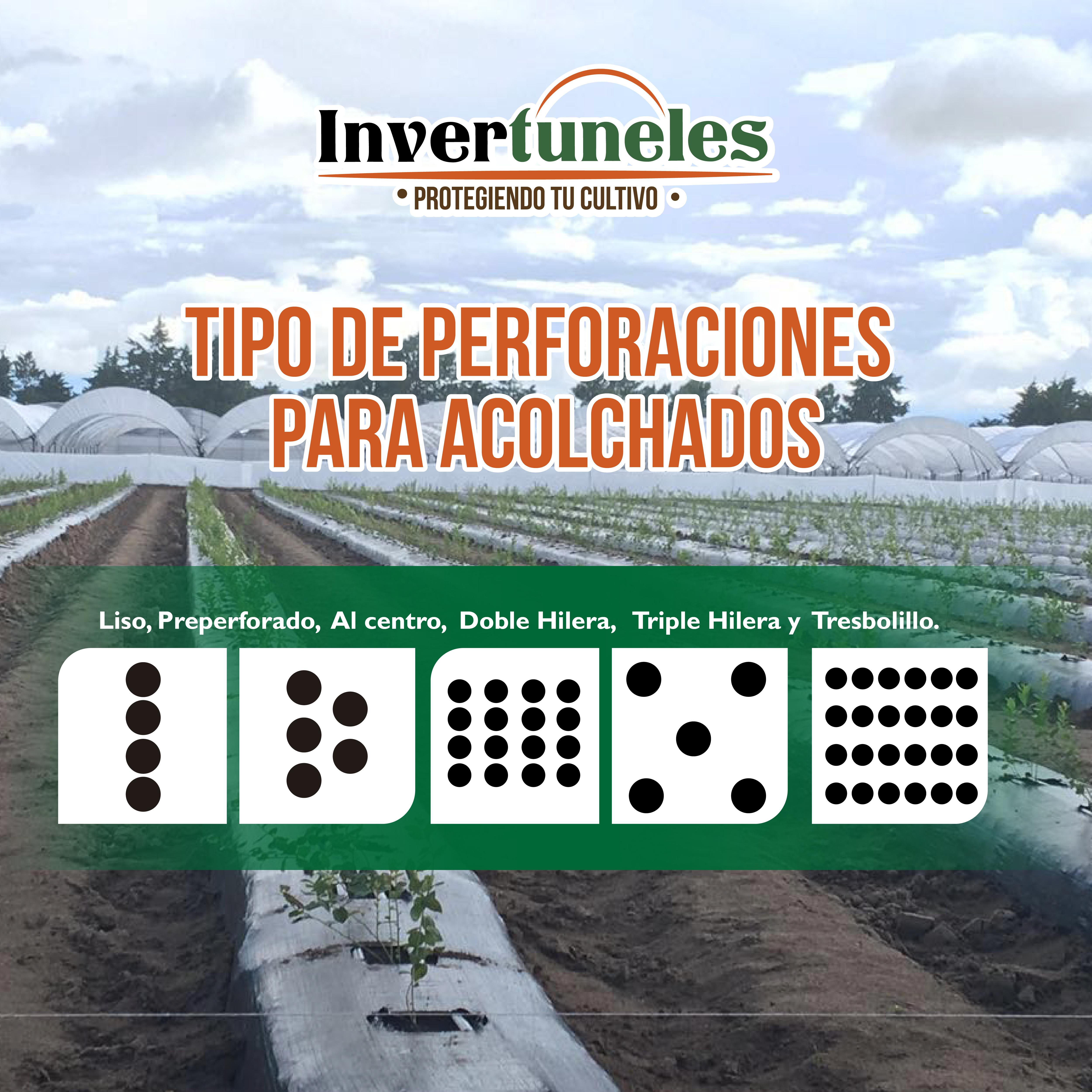 https://0201.nccdn.net/4_2/000/000/060/85f/5febrero_Mesa-de-trabajo-1-5000x5000.jpg