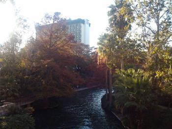 City park scene