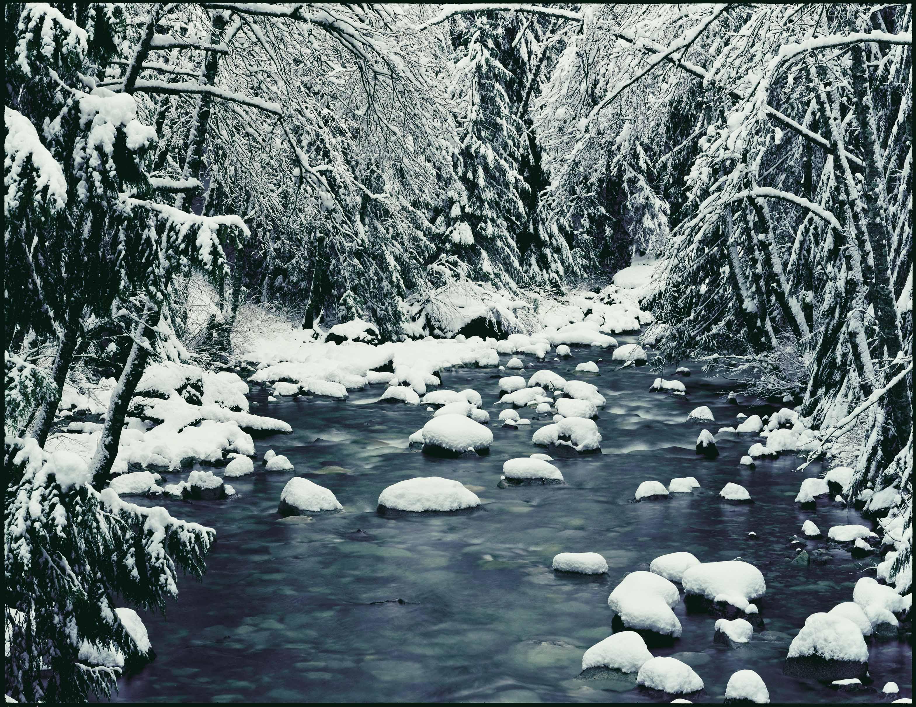 Denny Creek, WA