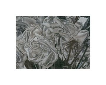 https://0201.nccdn.net/4_2/000/000/064/d40/42-Rose-Study.jpg