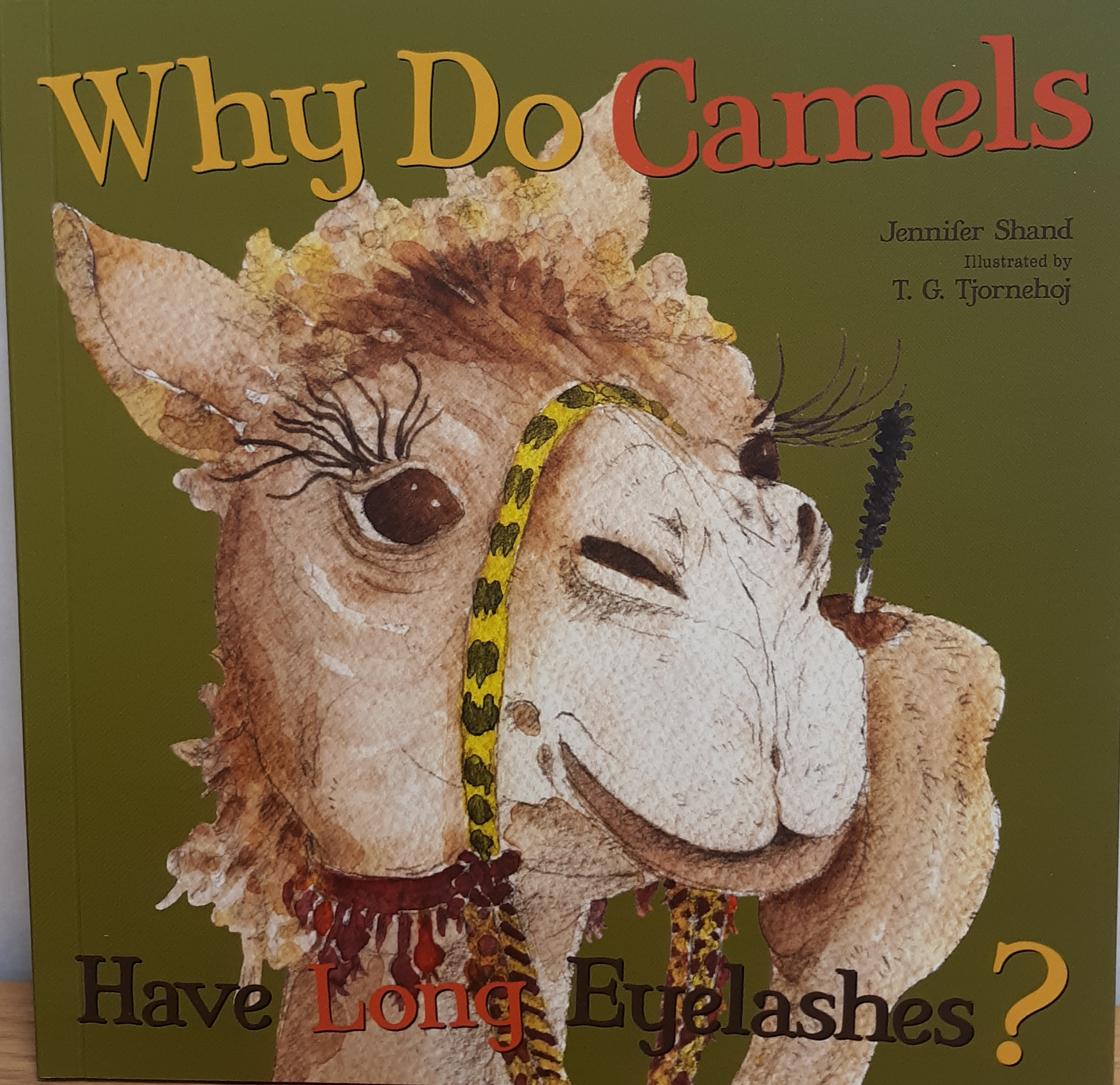 https://0201.nccdn.net/4_2/000/000/064/d40/why-do-camels-have-long-eyelashes.png