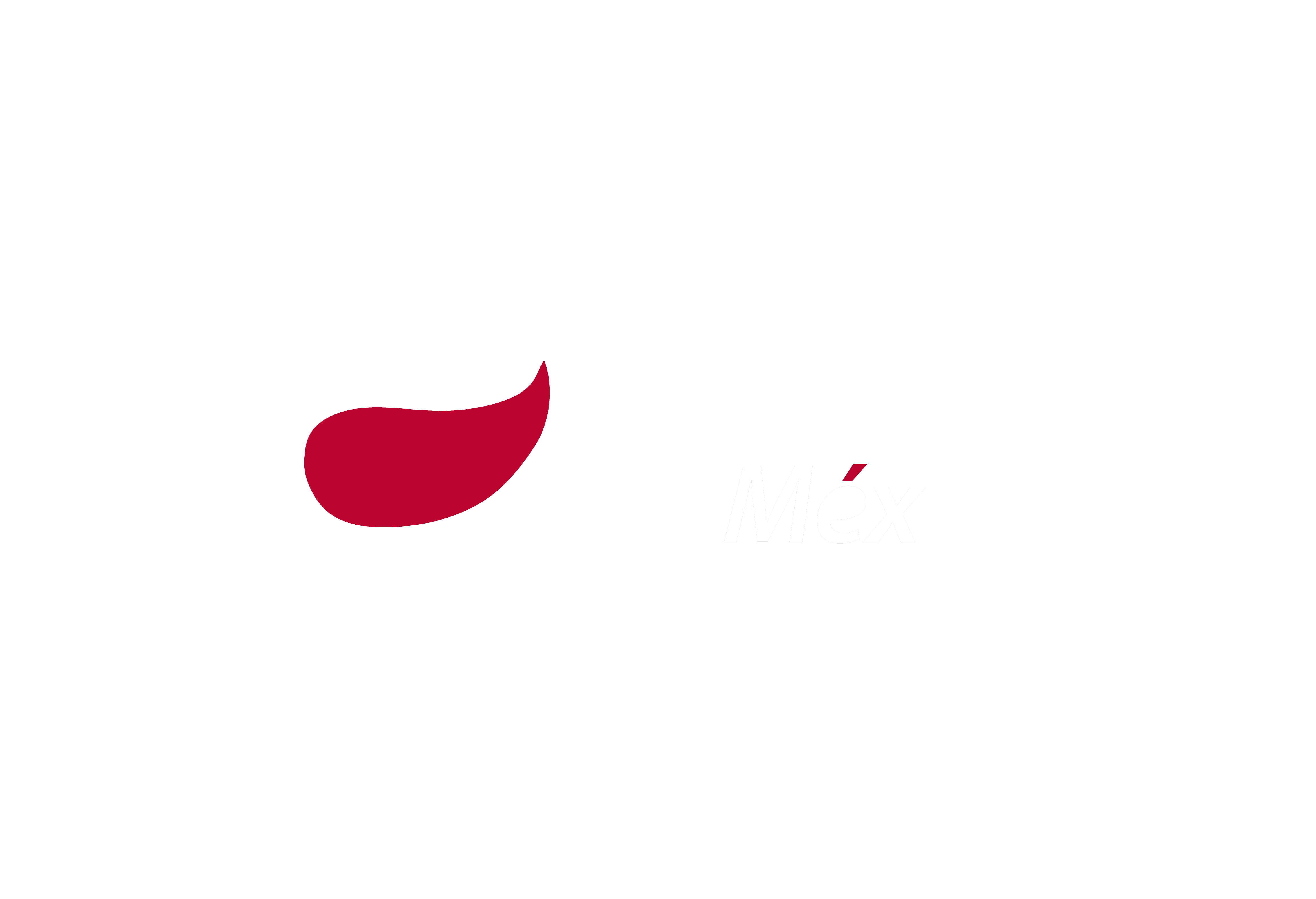 Paper Depot de México