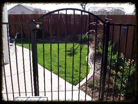 Arched Gate (Plain)