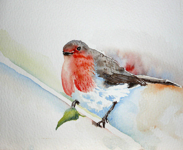 Robin ....... Watercolour