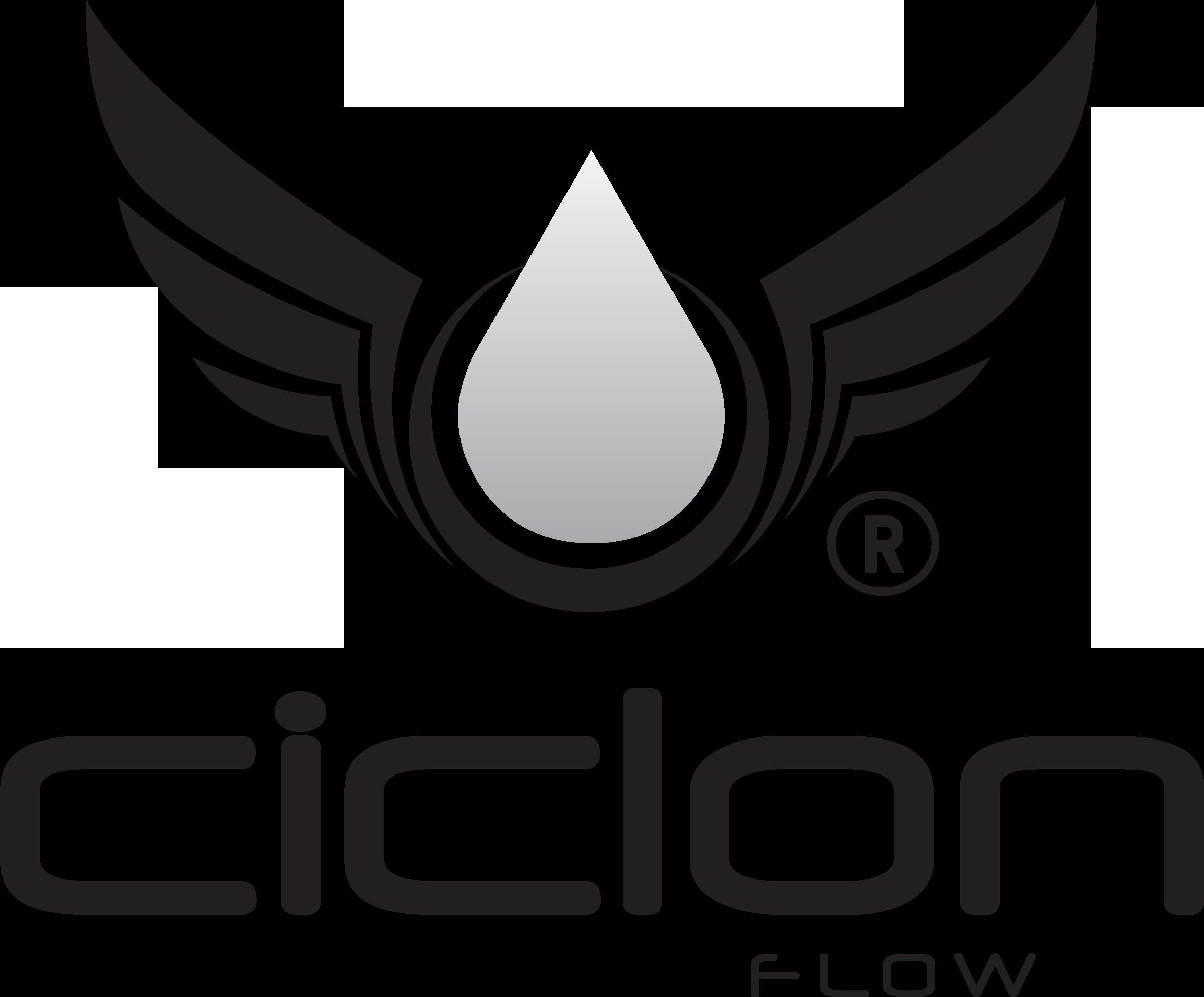 https://0201.nccdn.net/4_2/000/000/06b/a1b/LOGO-CICLON-02.png