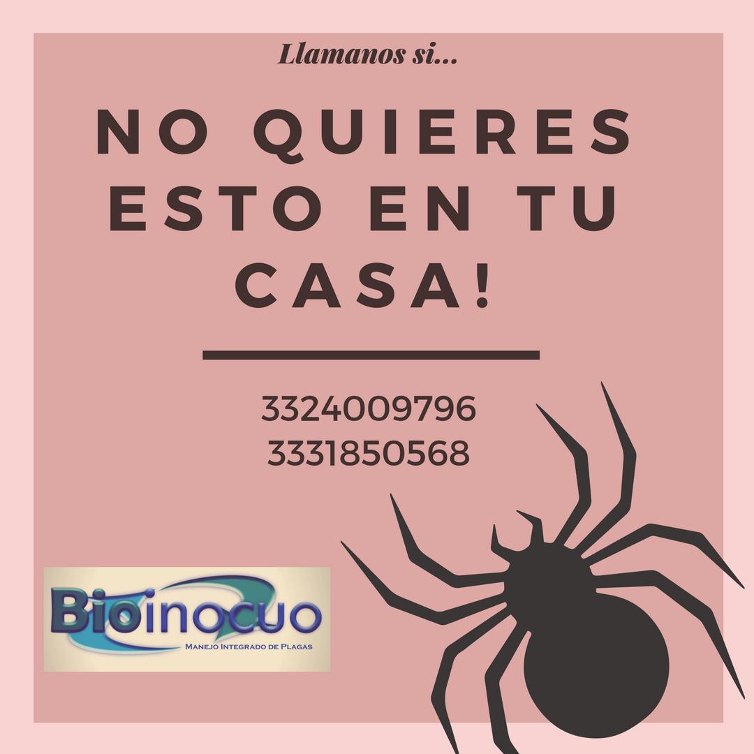 https://0201.nccdn.net/4_2/000/000/06b/a1b/ara--a-rosa.png