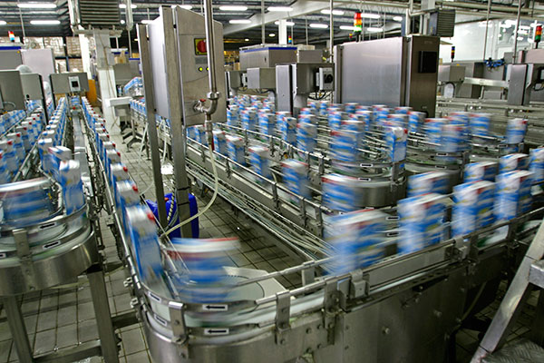 Production line of a dairy product