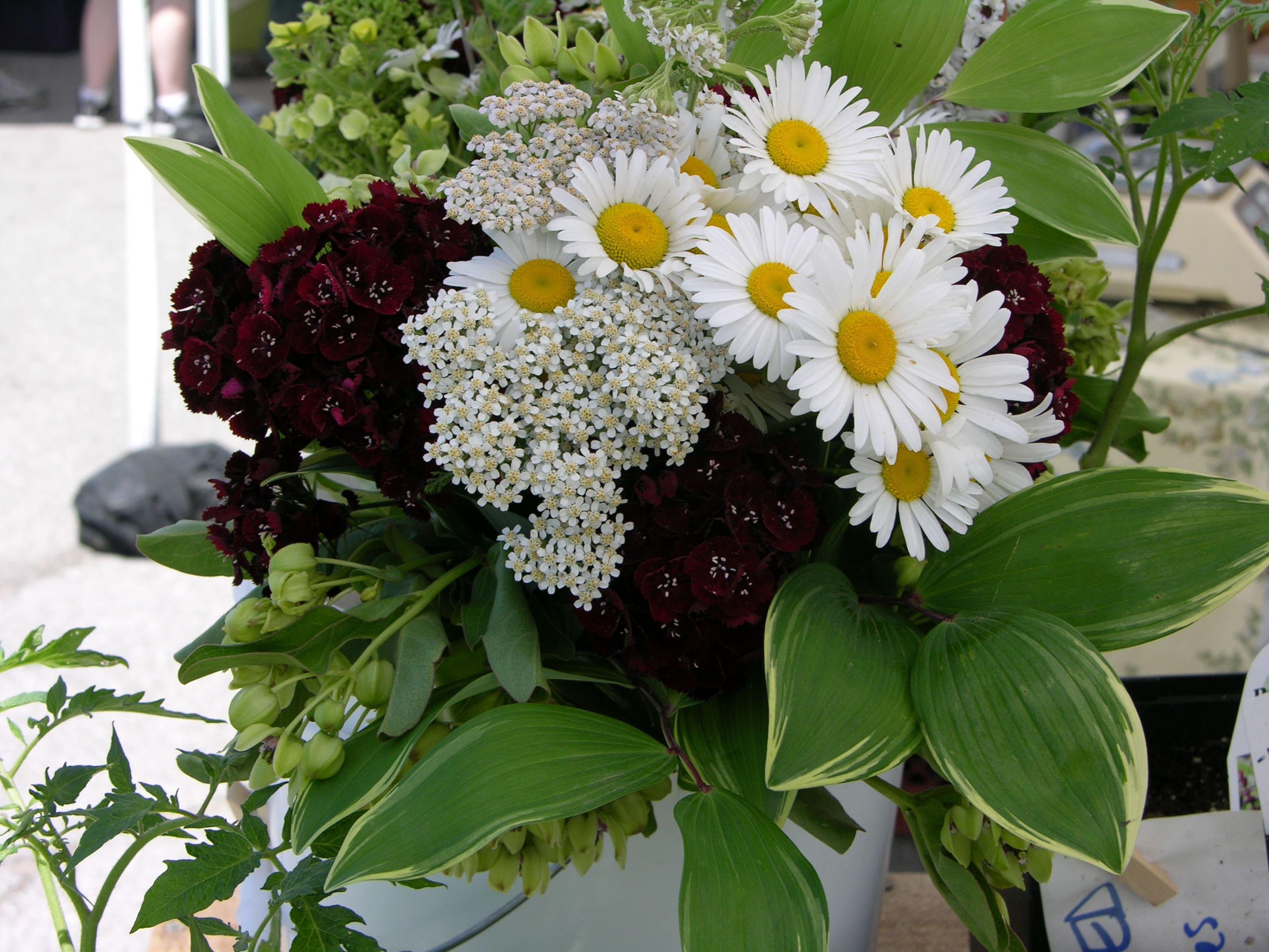 https://0201.nccdn.net/4_2/000/000/072/2aa/flower-bouquet-2010-4-min-3264x2448.jpg