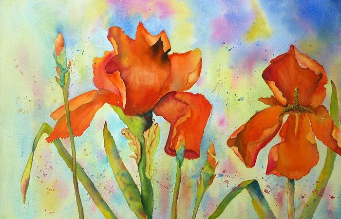 Flaming Iris
