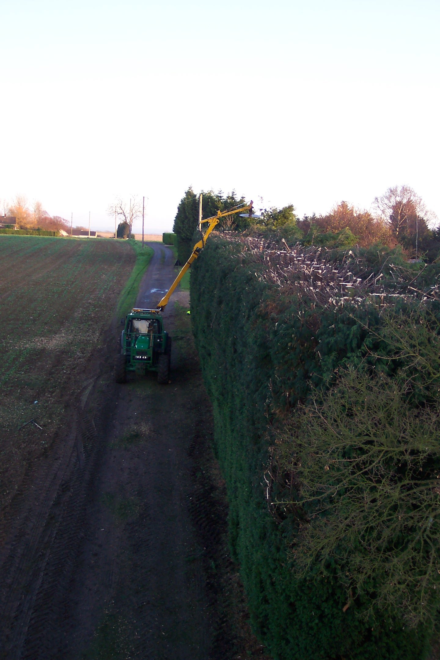 https://0201.nccdn.net/4_2/000/000/076/de9/Hedge-Cutting-2004--6-.jpg