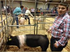 Will Prater 7th in Class 2015 TN State Market Hog Show