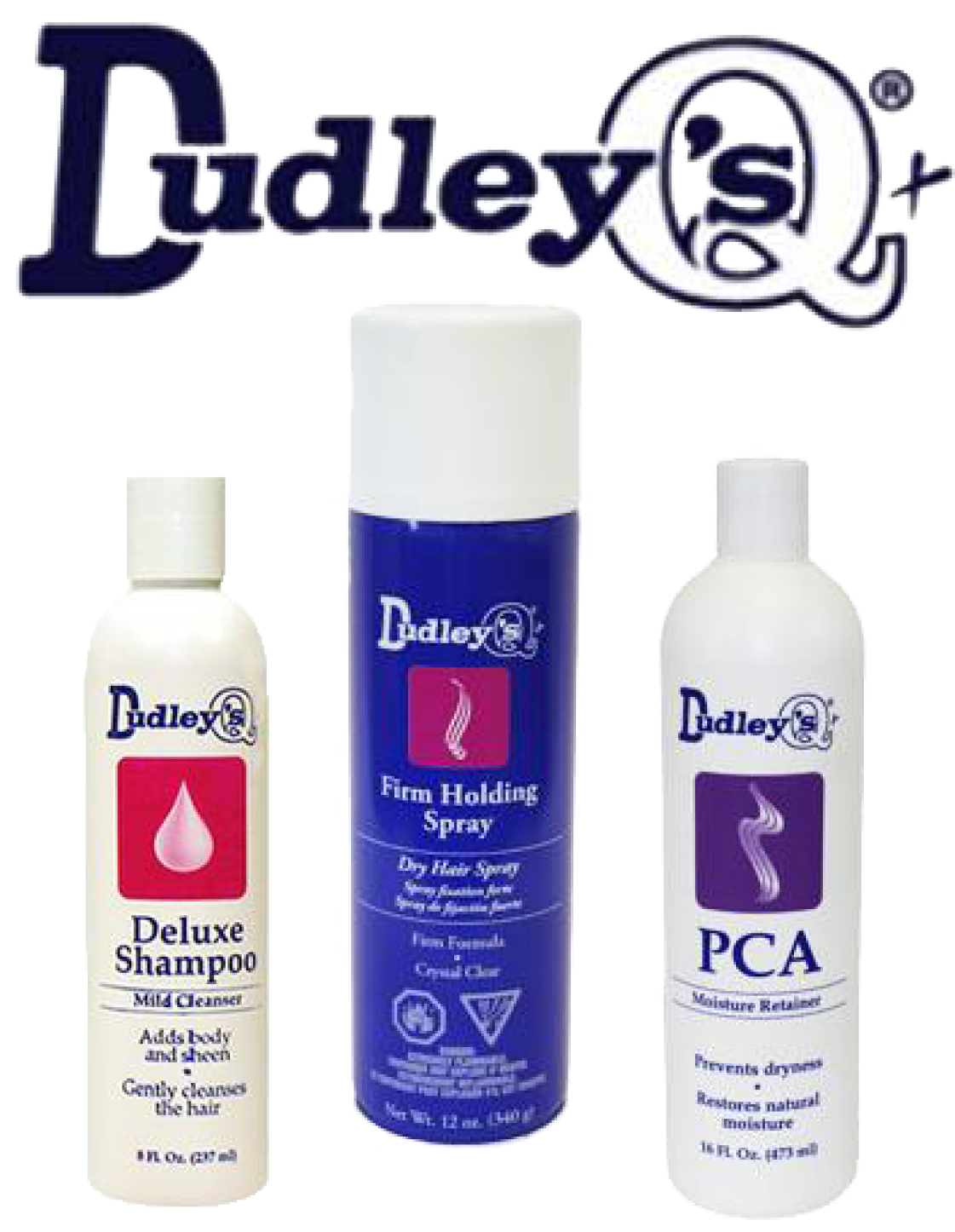 https://0201.nccdn.net/4_2/000/000/078/264/DUDLEYPRODUCTS-1121x1446.png