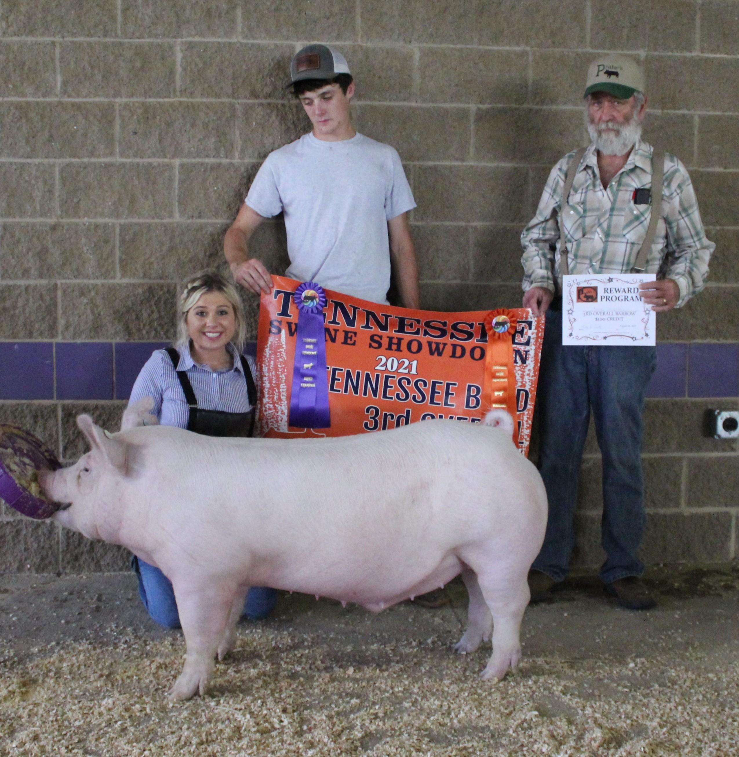 Lena Stricklen 2021 TN Swine Showdown Champion Yorkshire Barrow (TN Bred) 3rd Overall Barrow (TN Bred)