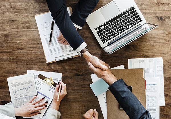 Professional People Handshake
