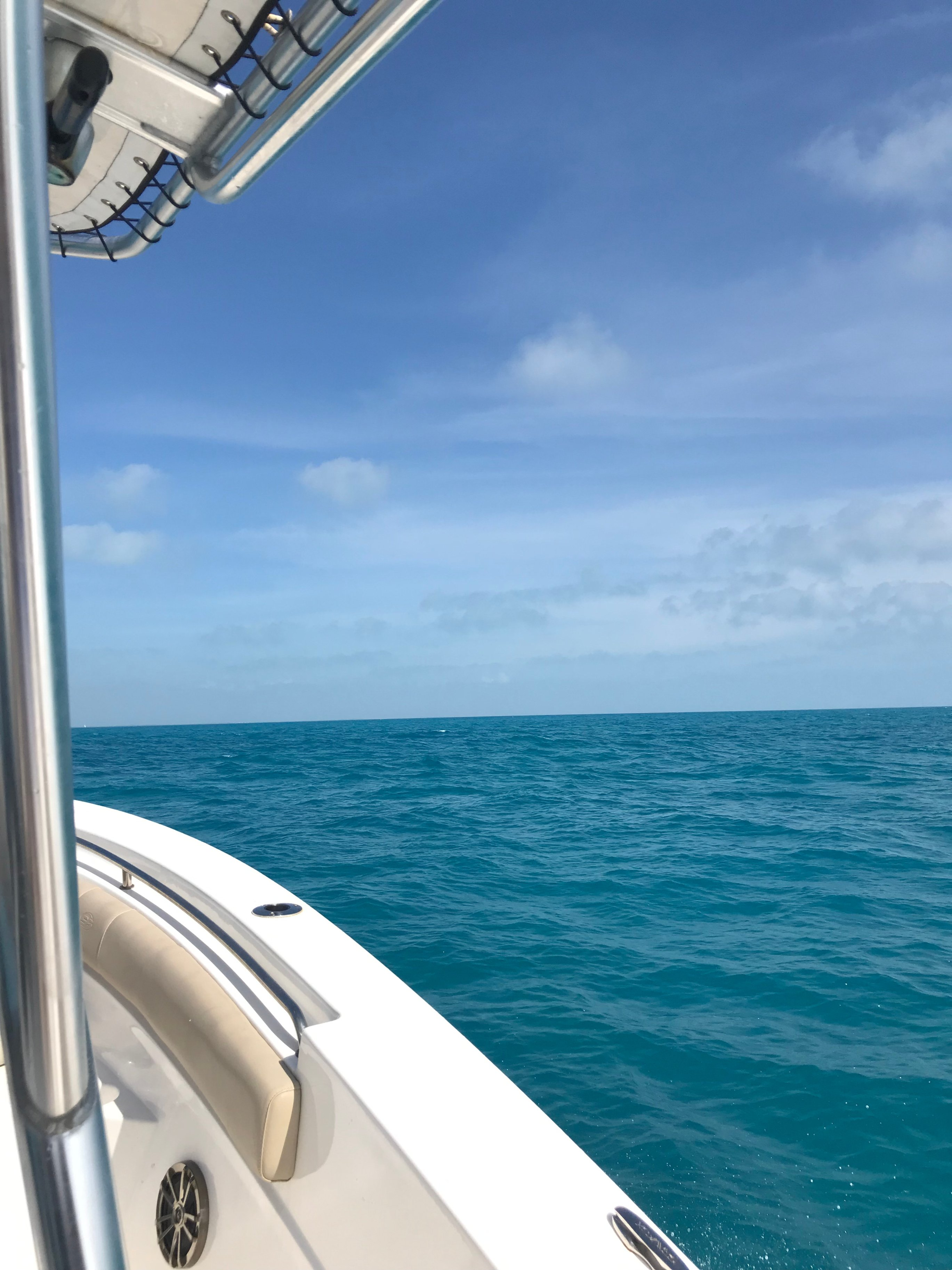Snorkeling off the coast of Key West