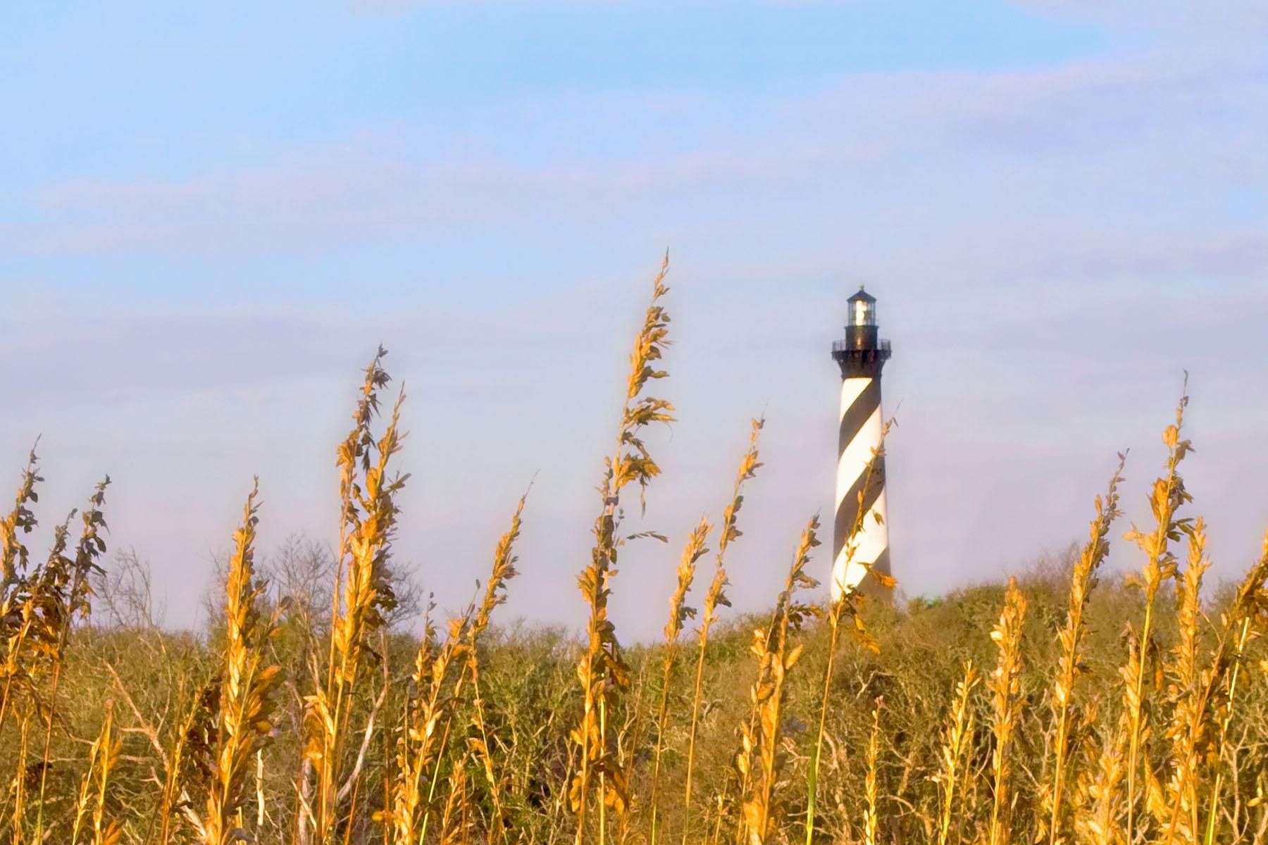 WILD OATS - Sea oats, nice sky, and a lighthouse. Just aim and shoot.
