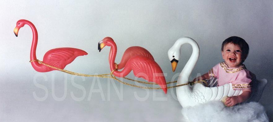 Chariot of Flamingos - Napa