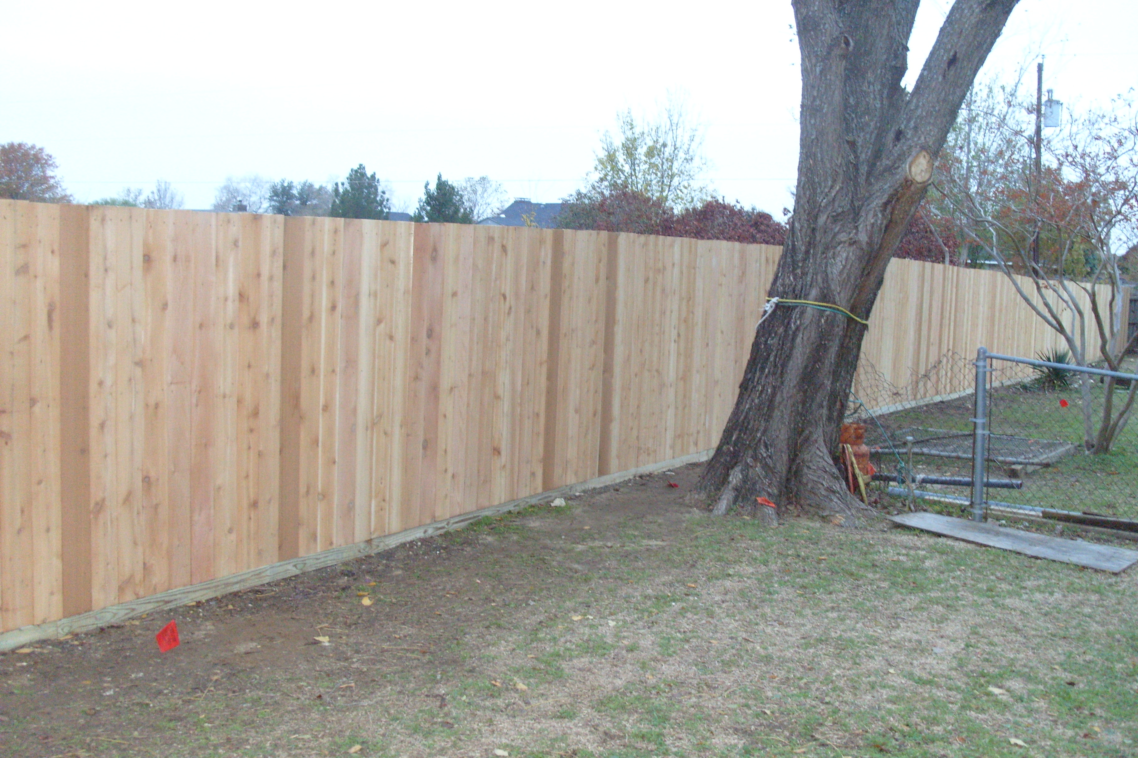 Ongoing Fencing Project