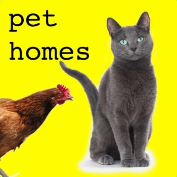 Cat & Chicken Enclosures