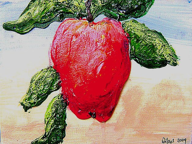 apple 1 6x8