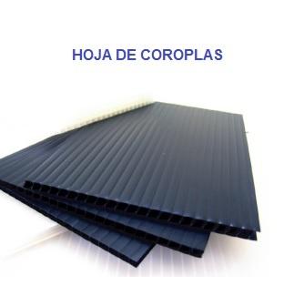 https://0201.nccdn.net/4_2/000/000/082/8ea/HOJA-DE-COROPLAS-323x336.jpg