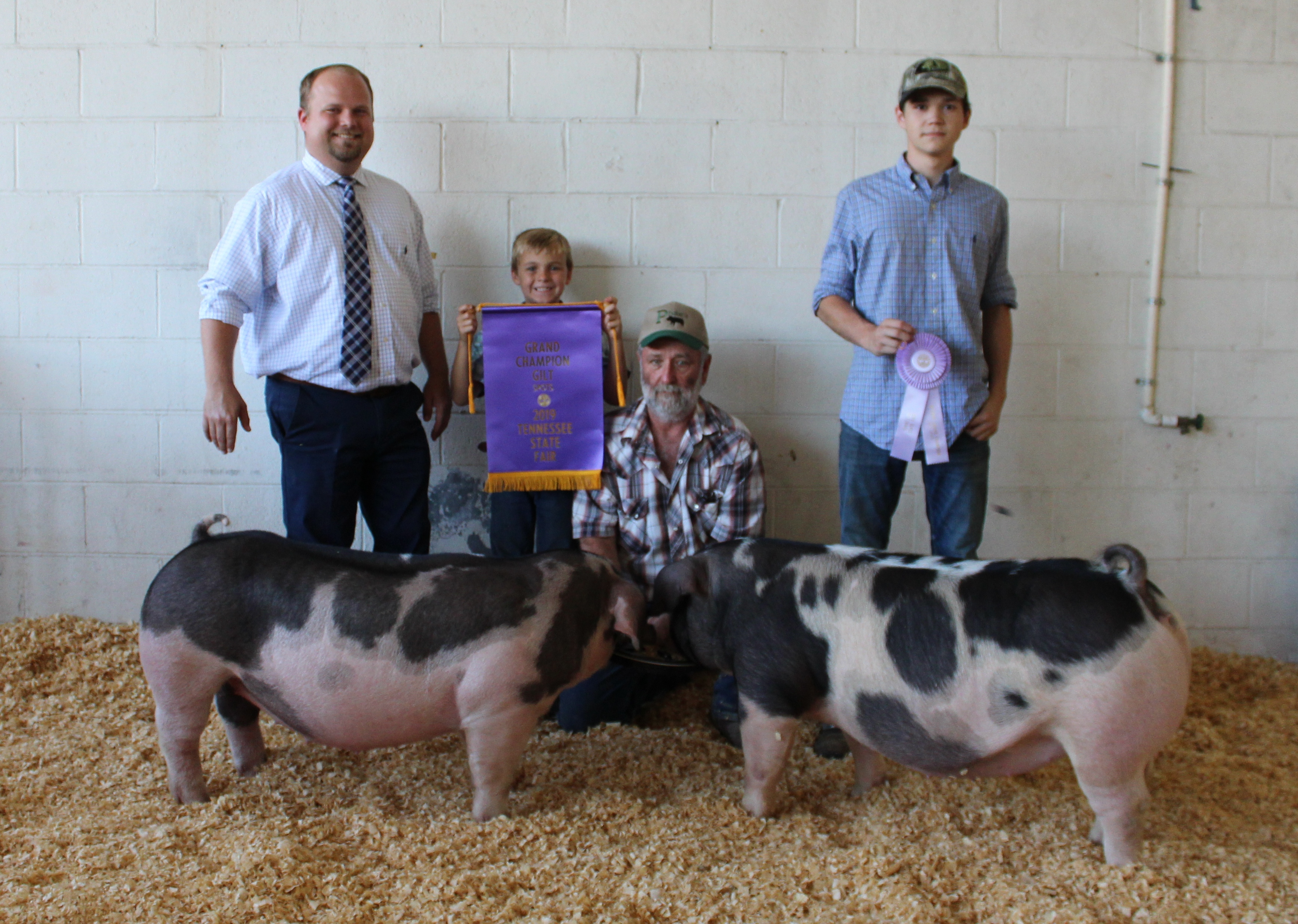 2019 Tennessee State Fair Declan Lusk  Champion Spot Gilt Gracee  Woods and Matt Roach Reserve Champion Spot Gilt