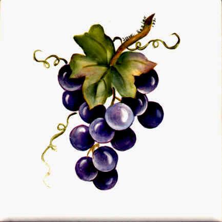 https://0201.nccdn.net/4_2/000/000/084/68b/grapes.jpg