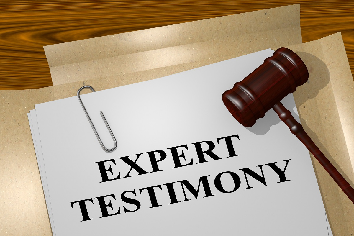 Expert Testimony on Paper File