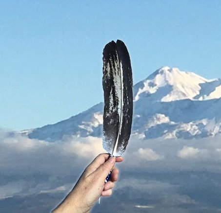 Individual wellness.  Eagle feather and Mount Shasta.