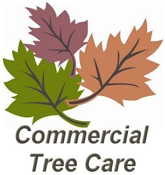 Commercial Tree Care