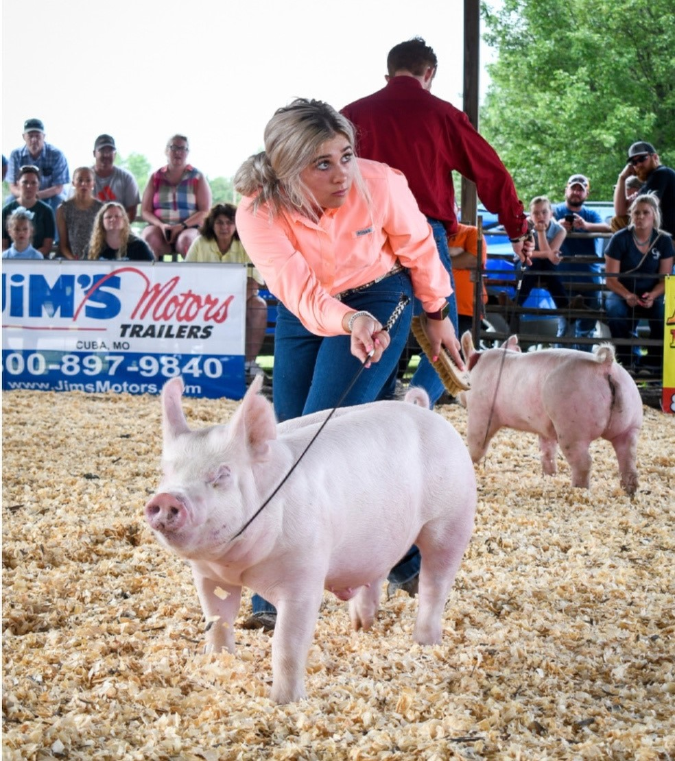 Lena Stricklen  Crawford County Summer Spectacular Reserve Champion Yorkshire Barrow