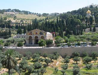 Mountain Of Olives Churches