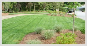 Residential landscaping by Stoeckig Landscape Group, a company that services Alpharetta, Georgia and surrounding areas